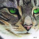 Emerald Eyes by Karen  Hull