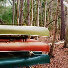 three canoes by Shannon Byous Ruddy