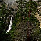 Yosemite Falls - HDR by Dennis Jones - CameraView