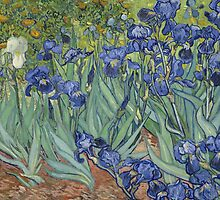 Irises by Vincent Vincent van Gogh by gshapley