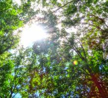 Mystical Forest Sky Sticker