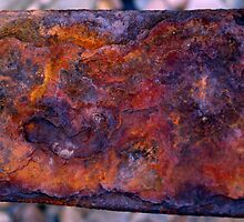 Rust by Steve Thomas