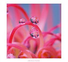 Swirly pearls by Angelique Brunas