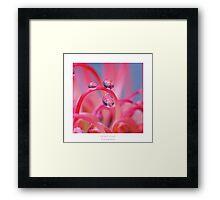 Swirly pearls Framed Print