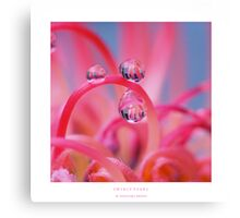 Swirly pearls Canvas Print