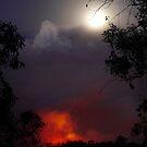 Kinglake fire, Victoria, 7th Feb 2009. by Ern Mainka