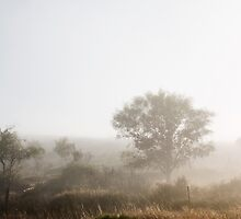 The Fog that Wouldn't Lift - Cape West Coast by SeeOneSoul