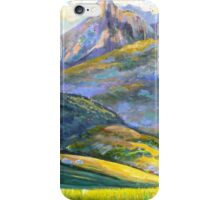 Mt.Warning in Springtime iPhone Case/Skin