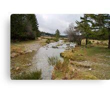 Bonheur river - Cevennes National Park Canvas Print