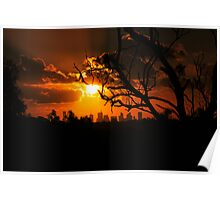 a burning sunset Poster