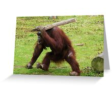 I'll do it myself then! Greeting Card