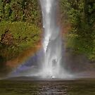 Bridal Veil Falls near Raglan New Zealand in Autumn by AnnDixon