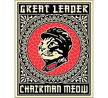 Great Leader Chairman Meow Photographic Print