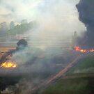 Yarra Valley Fires, 7th Feb 2009. by Ern Mainka
