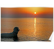 Ditte watches the sunset (Denmark) Poster