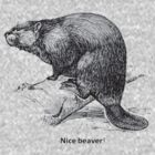 Nice Beaver by taiche