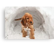 Igloo Sophie :) Canvas Print
