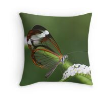 Glasswing Throw Pillow