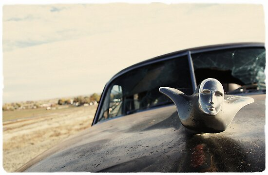 Caddy Hood Ornament by Chris Jorgensen