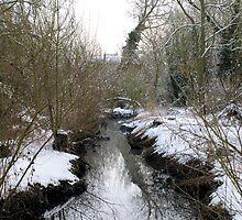 Snowy Stream by lisamaria