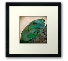 When you're smiling.... Framed Print