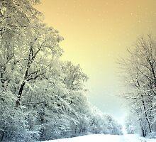Snowy nightfall by i l d i    l a z a r