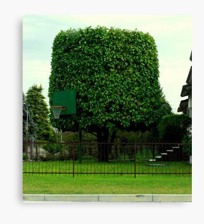 Basketball? Canvas Print
