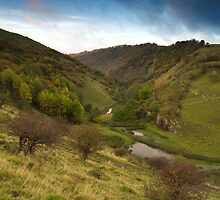 Autumnal Cressbrook Dale by Simon Davis
