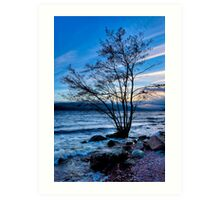 Ancient Shores - Loch Ness at Dusk Art Print