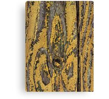 Decayed Painted Wood Canvas Print