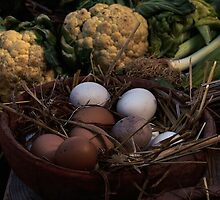 Eggs and Veggies by Anthony Vella