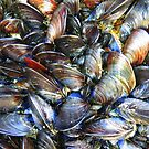 Colourful Mussels by Rob Parsons