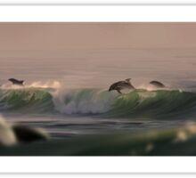 Olas y mas delfines Sticker