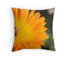 Time for Something Sweet Throw Pillow