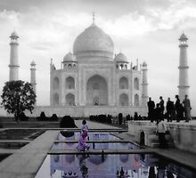 The Taj Suitors by Aimee Stewart