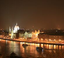 Budapest at night by erwina