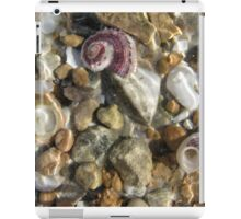 Beachcomber iPad Case/Skin