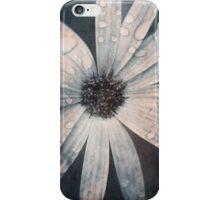 Still life of daisy with rain drops iPhone Case/Skin