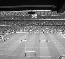 England vs New Zealand (Nov 08) by SpencerCopping