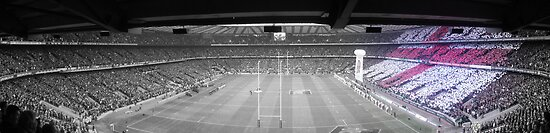 England vs New Zealand (Nov 08) by SpencerCopping