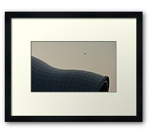 sage Framed Print