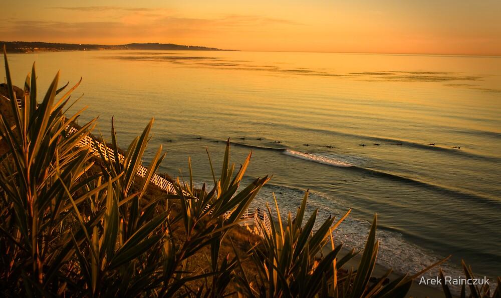 Sunset surfing by Arek Rainczuk