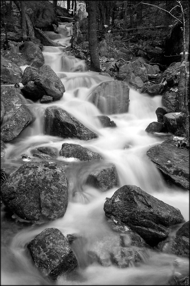 Falling Water by Dave  Higgins
