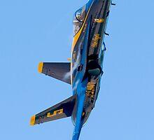 Blue Angels 2009 by gfydad