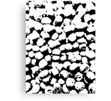 Monochrome Bonbons Canvas Print