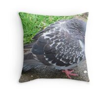 Chilly Pigeon Throw Pillow