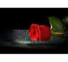 Rose On A Glass Tray Photographic Print