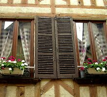 French windows, Auxerre, France by triciamary