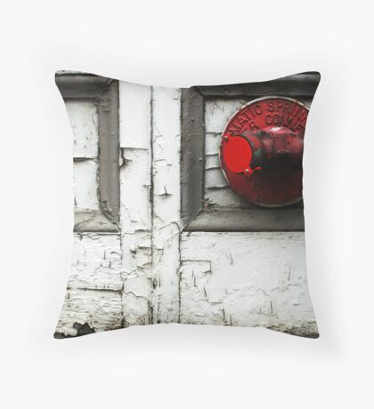 Peeling Walls Throw Pillow