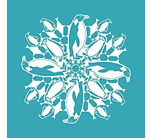 Penguin ZOOFLAKE Photographic Print